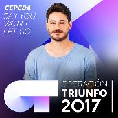 Say You Won't Let Go (Operacion Triunfo 2017)