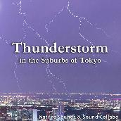 Thunderstorm in the Suburbs of Tokyo