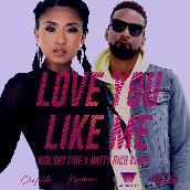 Love You Like Me (Walshy Fire x Natty Rico Remix) featuring Konshens