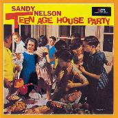 Teenage House Party
