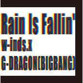 Rain Is Fallin'/HYBRID DREAM(通常盤)
